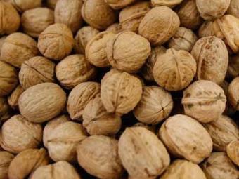 Pesquisadores acreditam que comer 75 gramas de nozes por dia melhora a vitalidade - Foto: Lúcio Távora | Ag. A TARDE