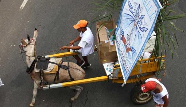 Na tradição, os jegues puxam carroças enfeitadas durante a Lavagem do Bonfim - Foto: Claudionor Júnior | Arquivo | Ag. A TARDE