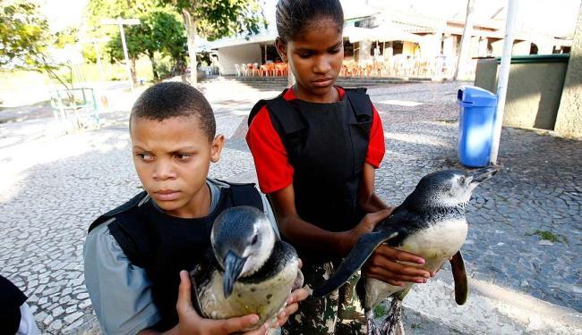 Integrantes da Guarda Mirim de Abaeté seguram os pinguins que apareceram na Rua K, em Itapuã - Foto: Margarida Neide | Ag. A TARDE