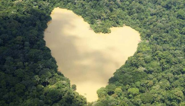 As florestas tropicais são altamente eficazes em absorver água da terra - Foto: Ivan Canabrava | Arquivo | Agência Reuters