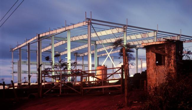 Trabalho de Pedro David que integra a exposição O Jardim - Foto: Divulgação