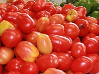 Tomate é rico em licopeno, um potente antioxidante - Foto: Joá Souza   Ag. A TARDE