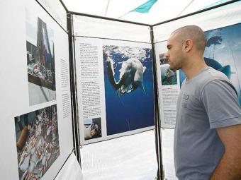Visitantes se informam sobre o bioma mais urbanizado do País - Foto: Margarida Neide   Ag. A TARDE