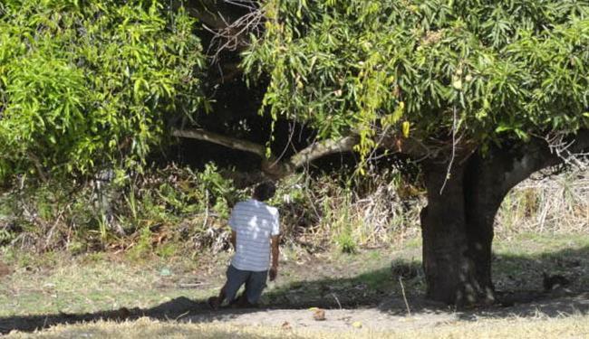 Corpo da vítima foi encontrado por um trabalhador da fazenda - Foto: Juarez Ghaé | Criativa On Line