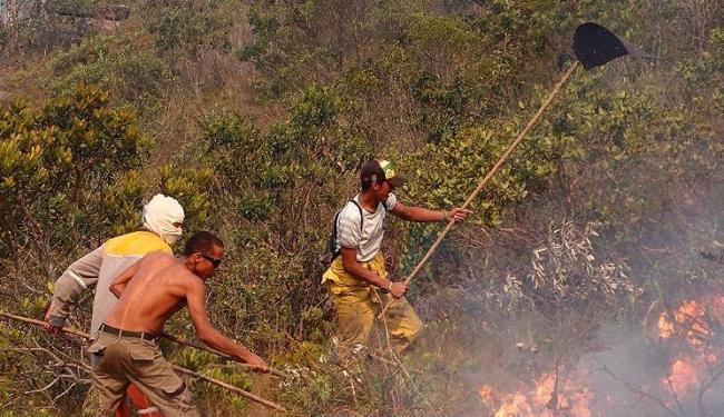 Bombeiros, brigadistas e técnicos do Instituto Chico Mendes trabalham para combater o fogo - Foto: Leitor de A TARDE