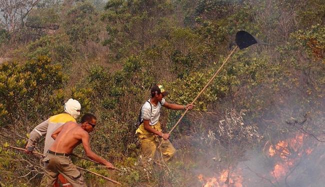 Voluntários ajudam no combate ao fogo que já consumiu mil hectares de vegetação no Vale do Capão - Foto: Leitor de A TARDE