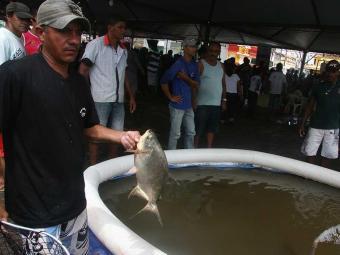 Cliente pode escolher peixe vivo na hora - Foto: Miriam Hermes | Ag. A TARDE