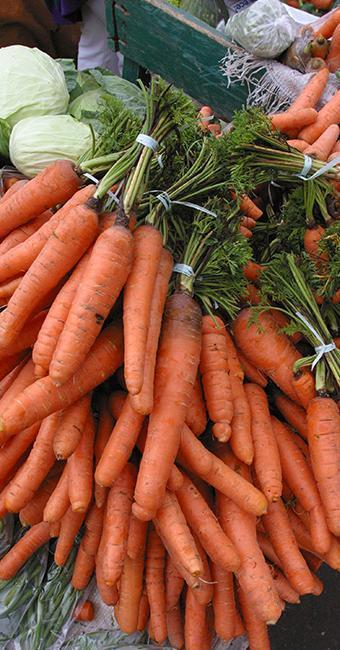 Alimentos ricos em betacaroteno, como cenoura, ajudam a manter o bronzeamento - Foto: Luciano da Matta | Ag. A TARDE