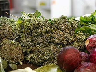Brócolis contém fitoquímicos que protegem contra o câncer - Foto: Xando Pereira | Ag. A TARDE