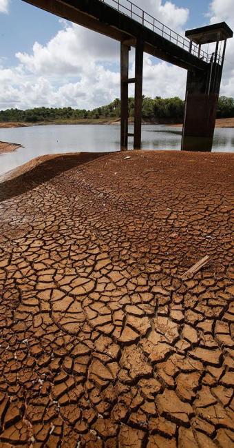 Benefício será dado aos produtores independentes, atingidos pela estiagem, na colheita 2011/2012 - Foto: Carlos Casaes | Ag. A TARDE