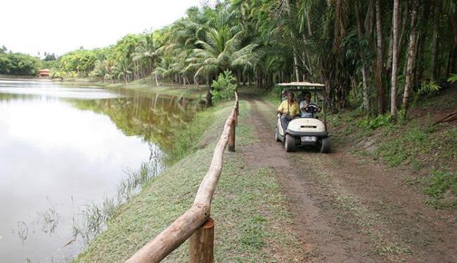 Em Mata de São João, parque conta com lagoas, nascentes, vales, riachos e mais de 60 mil aves - Foto: Luciano da Matta | Ag. A TARDE