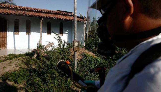 Apenas em 2013 já foram notificados, em Feira de Santana, 2.482 casos de dengue - Foto: Luiz Tito | Ag. A TARDE