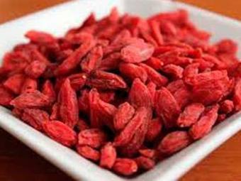 As gojo berries são ricas em vitamina C - Foto: Divulgação