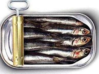 Sardinhas em lata são ricas em vitamina D - Foto: Divulgação