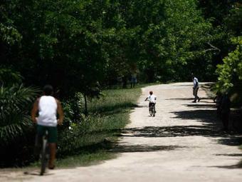 Fazer atividade ao ar livre, como no Pq. de Pituaçu, ajuda a combater o estresse - Foto: Raul Spinassé | Ag. A TARDE