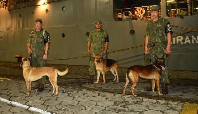 Cães farejadores foram treinados para detectar explosivos - Foto: Arquivo da Marinha