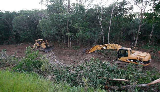 Máquinas põem abaixo a vegetação às margens da rodovia, que está sendo ampliada - Foto: Margarida Neide | Ag. A TARDE