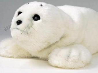 Paro tem a forma de um bebê foca, o que cativa os pacientes - Foto: Divulgação