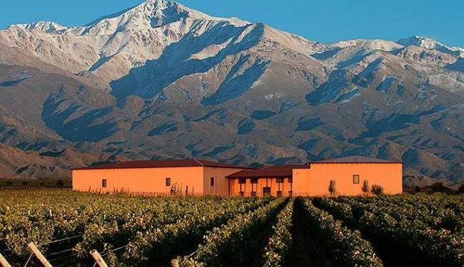 Vinhedos de Mendoza são um famoso destino turístico argentino - Foto: Casa da Palavra | Divulgação