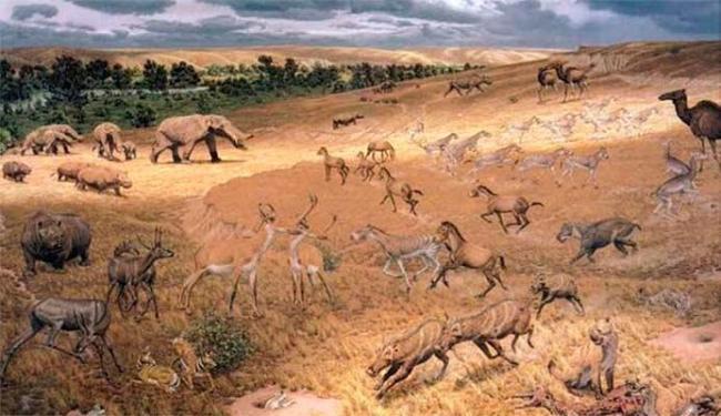 No período do Pleistoceno, a América do Sul se parecia muito com a savana africana atual - Foto: Divulgação