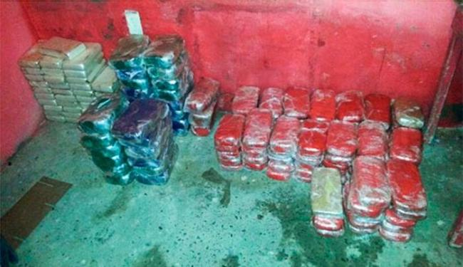 Droga estava escondida em um sítio - Foto: Divulgação | Polícia Federal