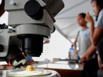 Programa contribui para desenvolver indústria, economia e pesquisa do país - Foto: Agência Brasil