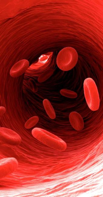 A hemofilia causa dificuldade de coagulação do sangue - Foto: Sergey Panteleev   www.istockphoto.com