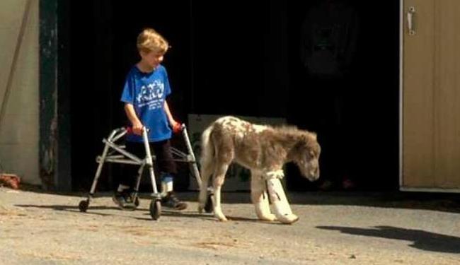Garoto e cavalinho ficaram amigos - Foto: Divulgação | Capital Area Therapeutic Riding Association