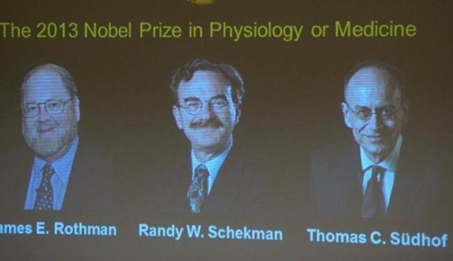 Os pesquisadores Thomas Sudhof, James Rothman e Randy Schekman conquistaram o prêmio - Foto: AP Photos