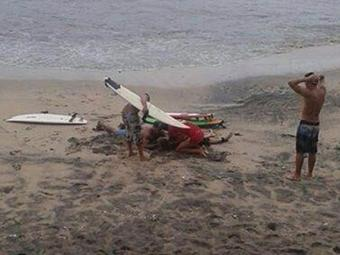 Surfistas foram atingidos por um raio durante banho na Barra - Foto: Reprodução | Facebook