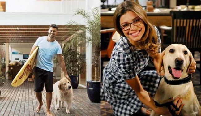 Cauã e Grazi estão disputando os três cachorros da família - Foto: Divulgação
