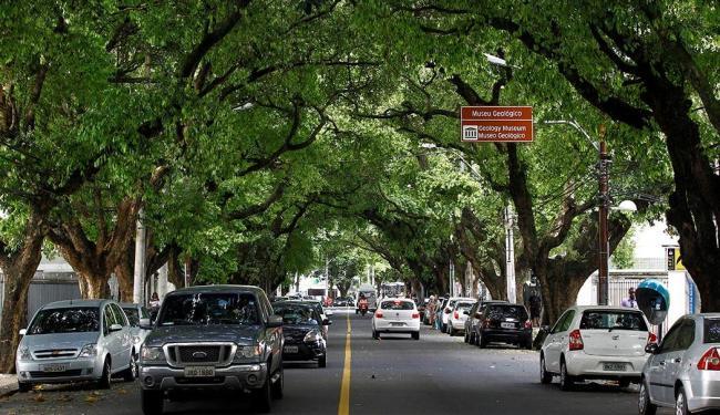 O Corredor da Vitória, no Centro, é uma via repleta de árvores, que suavizam a atmosfera da região - Foto: Fotos: Eduardo Martins | Ag. A TARDE