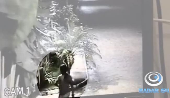 Câmera de segurança mostra Butterfly pedindo ajuda - Foto: Reprodução | Radar 64/YouTube