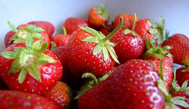 Frutas vermelhas, como o morango, são ricas em fibras e flavonóides - Foto: Przemyslaw Szczepanski   Divulgação