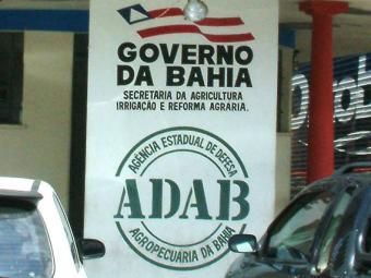 Oportunidades são para Curaçá, Lajedão e Salvador - Foto: Divulgação
