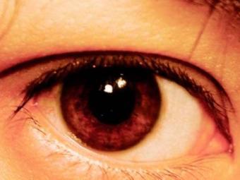 Cirurgia para implantar a retina biônica dura 30 minutos - Foto: Divulgação