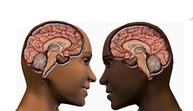 Estudo parece confirmar certos estereótipos sobre atitudes e comportamentos próprios de cada sexo - Foto: Divulgação