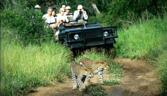 Safari na África foi a viagem inesquecível da top model brasileira - Foto: Divulgação