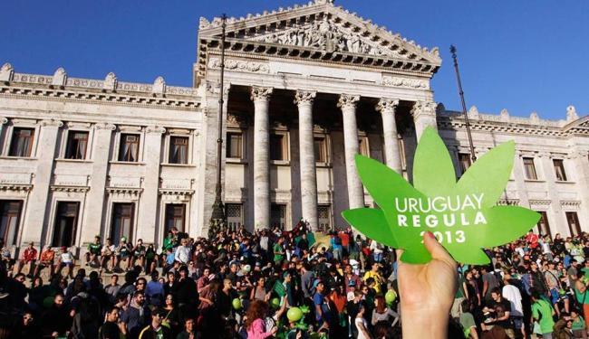 Senado aprovou o projeto de lei que legaliza o cultivo e a distribuição de maconha - Foto: Agência Reuters