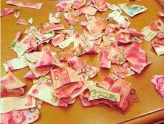 Criança rasgou o dinheiro em vários pedaços - Foto: Reprodução | Weibo