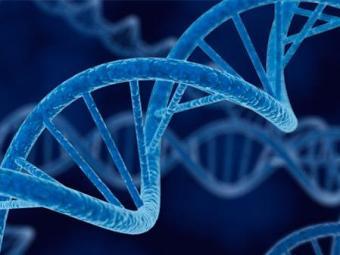 Exercício aeróbio aumenta atividade de reparo do DNA