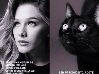Fiorella adotou a gatinha que aparece com ela na foto do calendário - Foto: Reprodução | Instagram