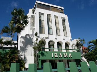 Ibama oferece vagas para profissionais de TI - Foto: Haroldo Abrantes | Arquivo | Ag. A TARDE