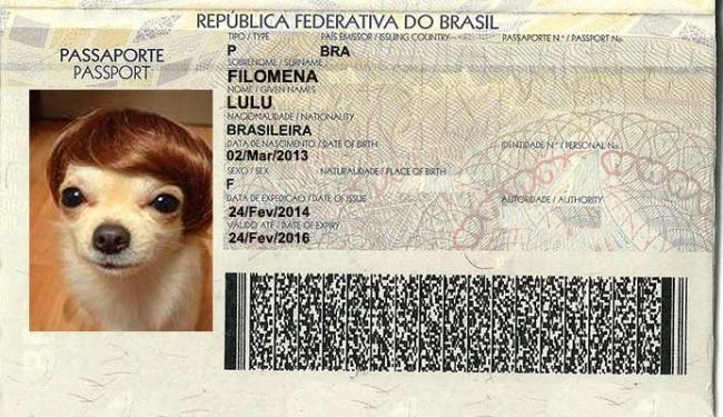 Passaporte não é obrigatório e vale, por enquanto, apenas nos Países do Mercosul - Foto: Montagem