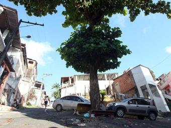Árvore encosta em fiação - Foto: Lúcio Távora | Ag. A TARDE