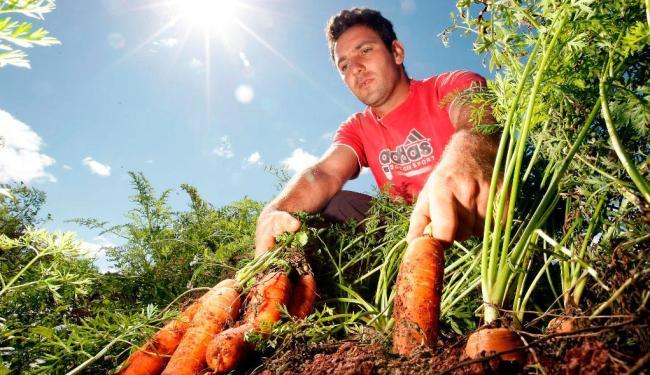 A primeira portaria atende a agricultores da Bahia e outros estados - Foto: Hederson Alves | Divulgação