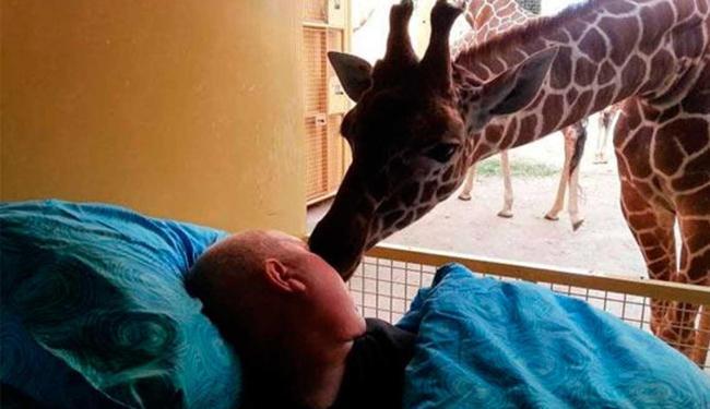 Funcionário de zoo ganhou