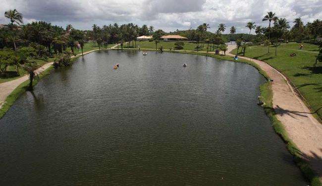 Especialista diz que Parque de Pituaçu perdeu 60% da sua área desde criação - Foto: Lúcio Távora   Ag. A TARDE