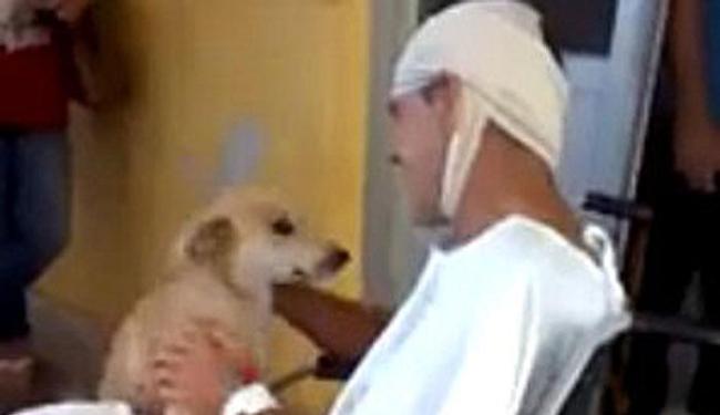 Cachorro esperou para reencontrar seu dono - Foto: Reprodução