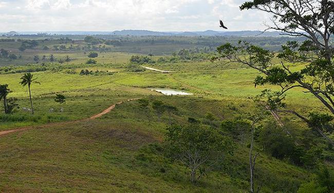 Terreno pertencente a fazenda em São Francisco foi cedido à FAB - Foto: Divulgação l Ascom SFC